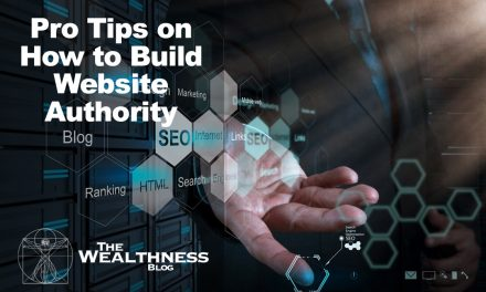 Pro Tips on How to Build Website Authority