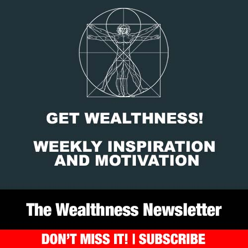 The Wealthness Newsletter