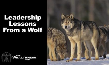 A Valuable Leadership Lesson From The Wolf Pack
